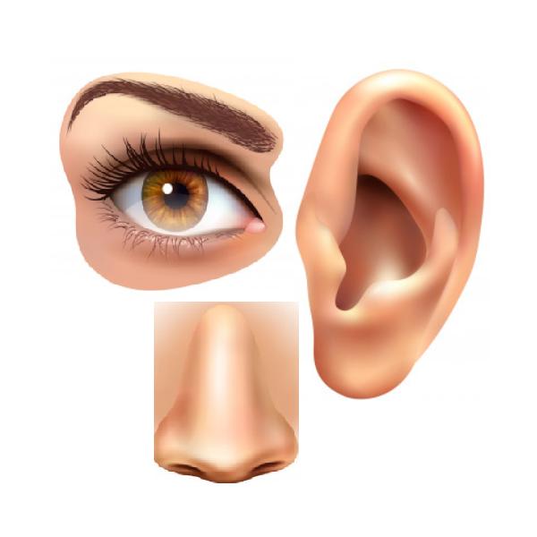 Eye, Nose, Ear Cure