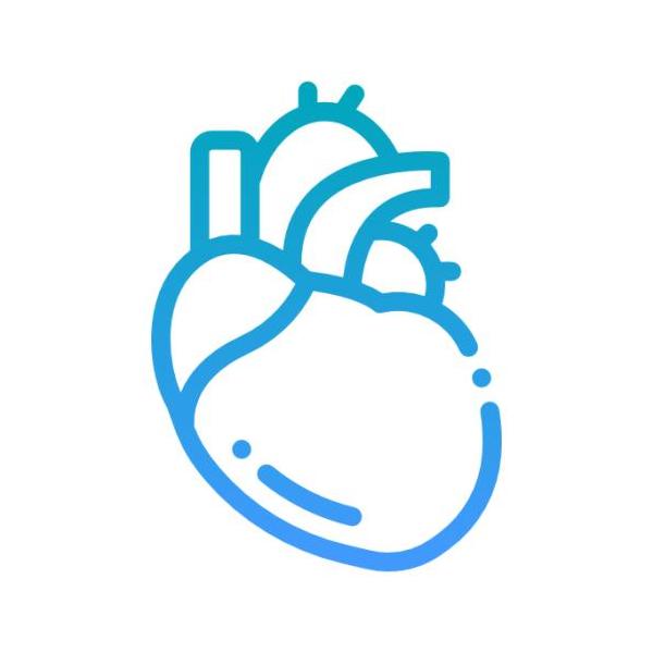 Heart Cure - Cardiovasculars